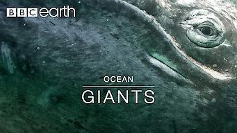 Ocean Giants: Ocean Giants